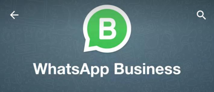 """Disponibile """"WhatsApp Business"""" per la tua Attività"""