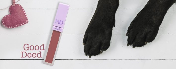 Makeup Delight per la Lega del cane di Palermo